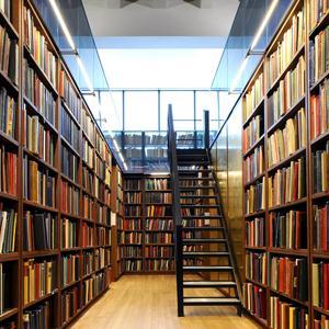 Библиотеки Ливнов